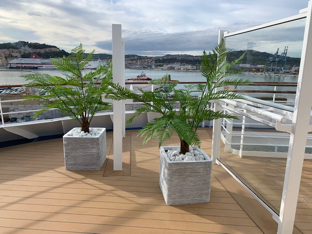 Artificial plants on cruise deck