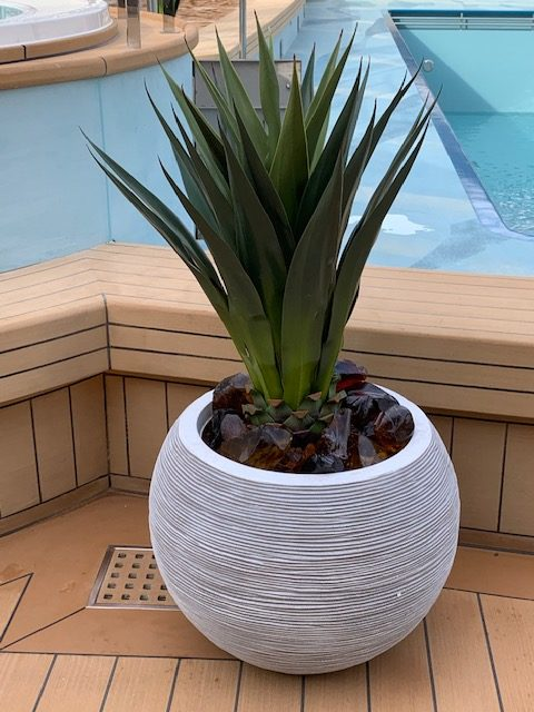 Artificial plant in planter pool deck