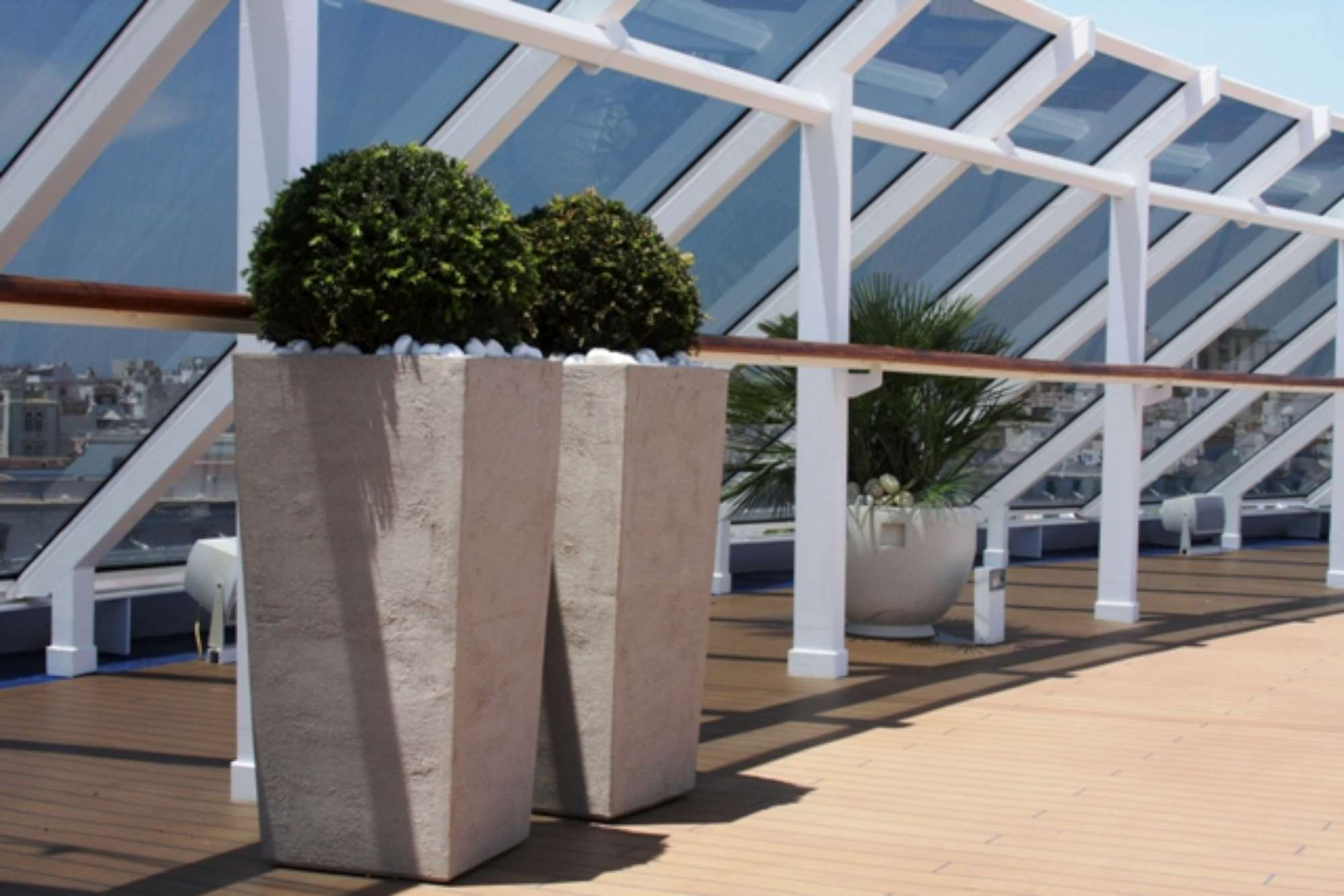 plants in pot on cruise deck
