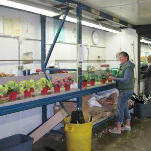 florist making flower arrangements