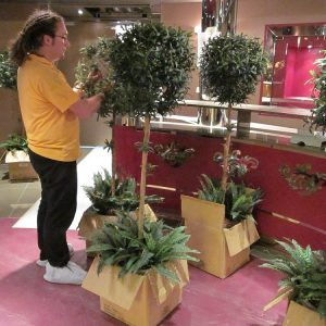 florist onboard ship with plants